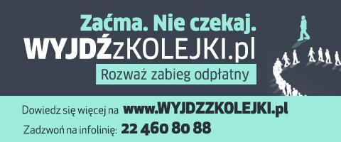 pryzmat oku article fot poziom wyjdz z kolejki 480x200 - Pryzmat wspiera akcję edukacyjną wyjdzzkolejki.pl