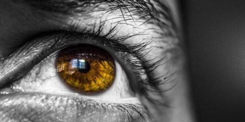 face 1282277 1920 480x240 - Żółta plamka – jak wygląda leczenie?