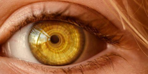 pexels photo 326536 480x240 - Iniekcje doszklistkowe Eylea – jedna z metod leczenia AMD